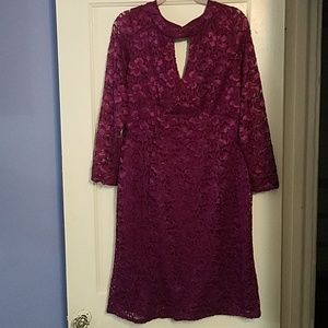 Ashley Stewart plum lace sheath dress, sixe 14/16.